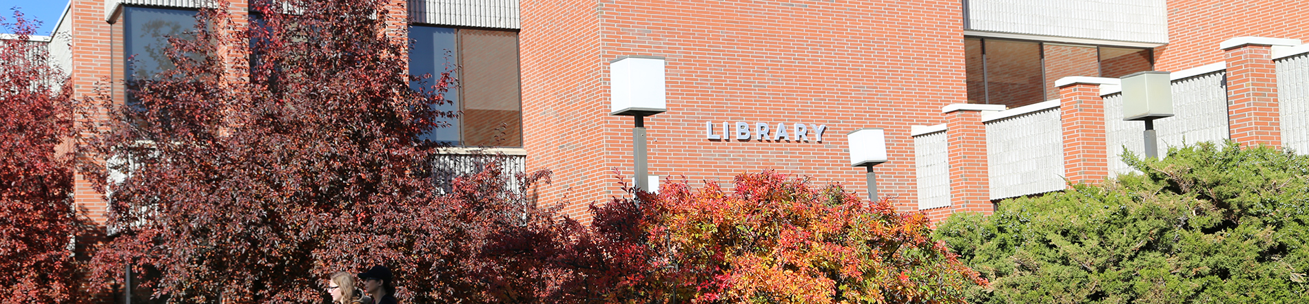 Montana Tech Research Library
